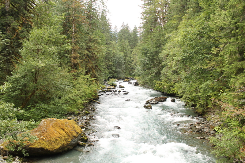 Dosewallips River, Olympic Peninsula, Washington